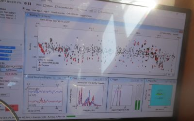 The first ever acoustic recordings in Manx waters from a towed hydrophone