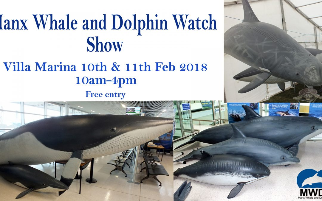Manx Whale and Dolphin Watch Show!