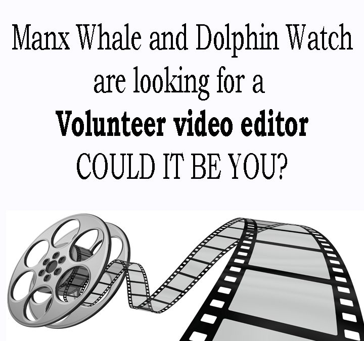 Video editor required